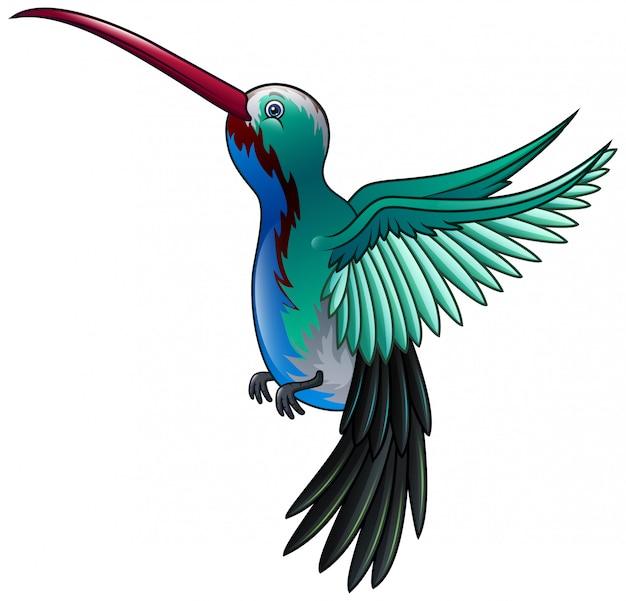 Beau dessin animé volant d'un colibri sauvage