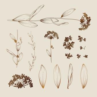 Beau fond floral. éléments de design