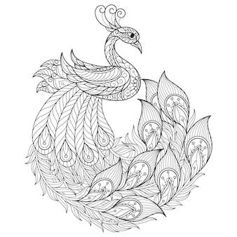 Beau paon, illustration de croquis dessinés à la main pour livre de coloriage adulte.