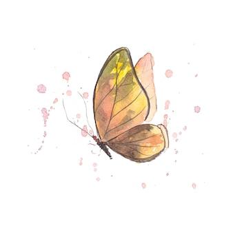 Beau papillon aquarelle isolé sur blanc