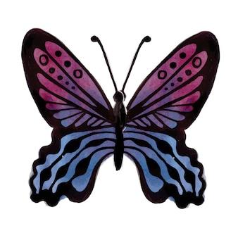 Beau papillon aquarelle