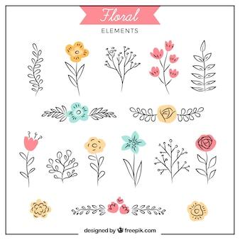Beau paquet d'éléments floraux dessinés à la main