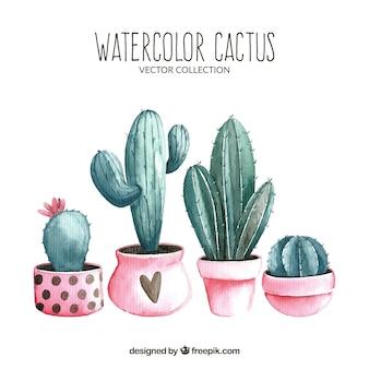 Beau paquet de cactus aquarelle