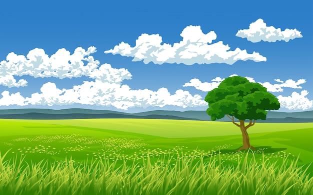 Beau paysage dans un champ vert avec arbre et nuages