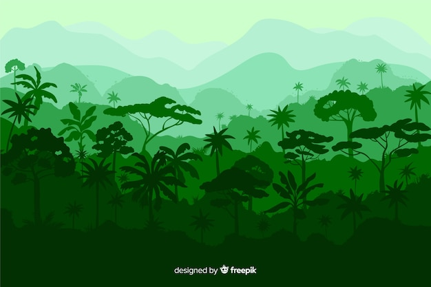 Beau paysage de forêt tropicale avec une variété d'arbres