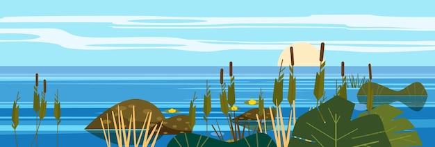 Beau paysage mer lac pierres roseaux flore roches