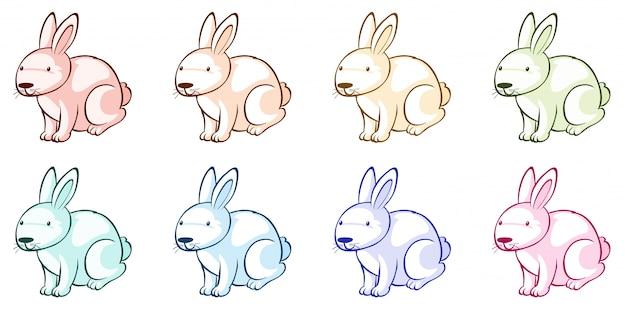 Beaucoup de lapins de différentes couleurs