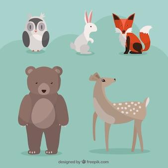 Beaux animaux sauvages dessinés à la main mis