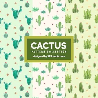 De beaux motifs de cactus dessinés à la main