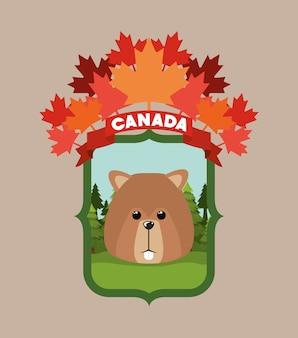 Beaver animal et pins
