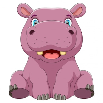 Un bébé hippo