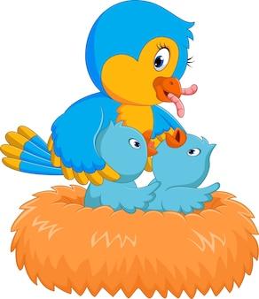 Bébé oiseau dans le nid