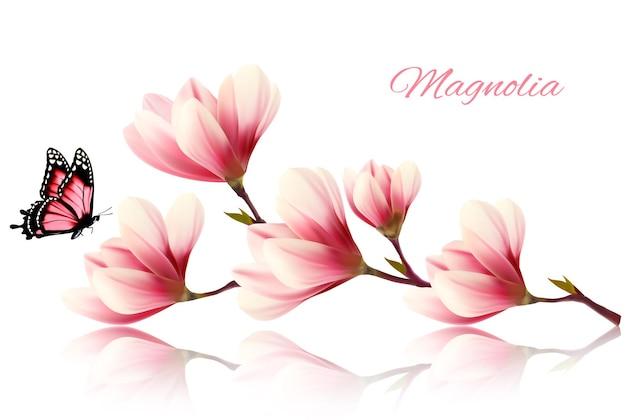Belle branche de magnolia avec un papillon. vecteur.