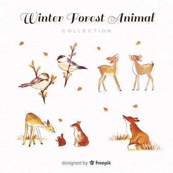 Belle collection d'animaux aquarelle d'hiver
