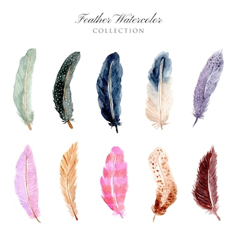 Belle collection aquarelle de plumes
