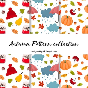 Belle collection d'automne avec des illustrations