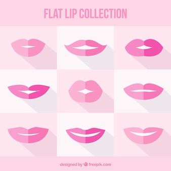 Belle collection de lèvres plates