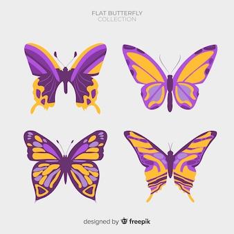 Belle collection de papillons