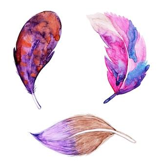 Belle collection plume aquarelle