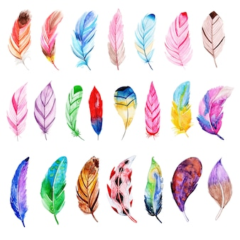 Belle collection de plumes d'aquarelle