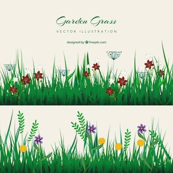 Belle et colorée silhouette de jardin