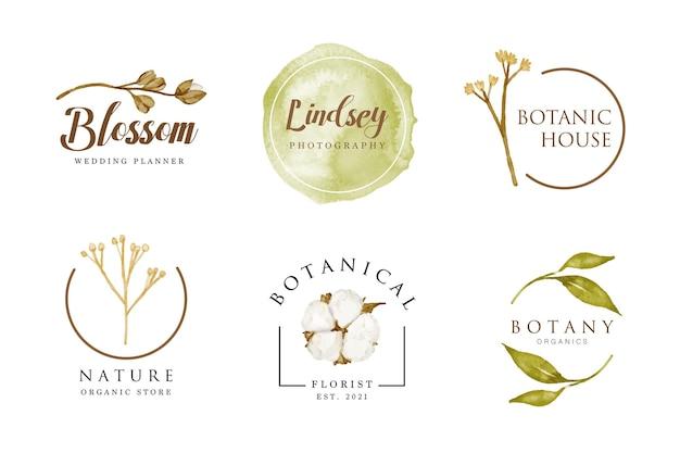 Belle création de logo de fleur séchée féminine