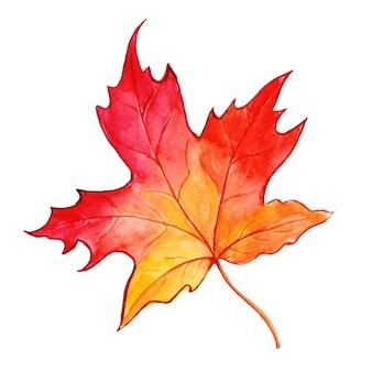 Belle feuille d'automne aquarelle