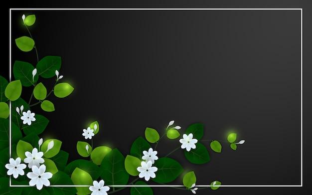 Belle fleur de jasmin sur fond noir