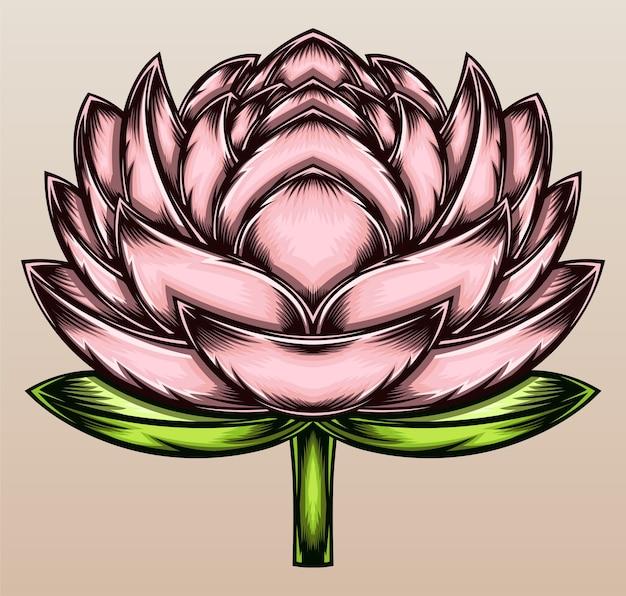 Belle fleur de lotus.