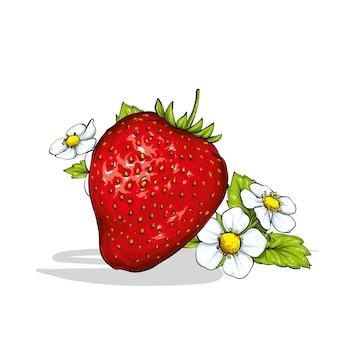Belle fraise avec des feuilles et des fleurs