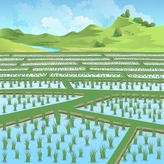 Belle rizière devant les montagnes vertes et la rivière