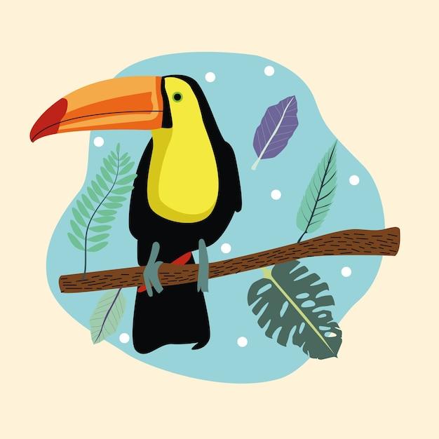 Belle scène d'oiseau toucan sauvage