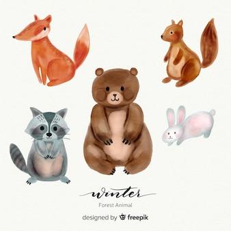 Belle série d'animaux de la forêt d'hiver