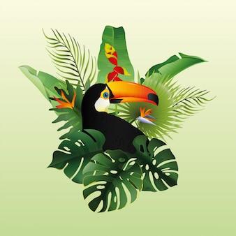 Belle toucan avec floral decoratif
