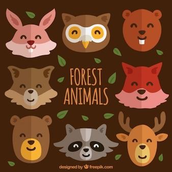Belles avatars d'animaux de la forêt dans la conception plate