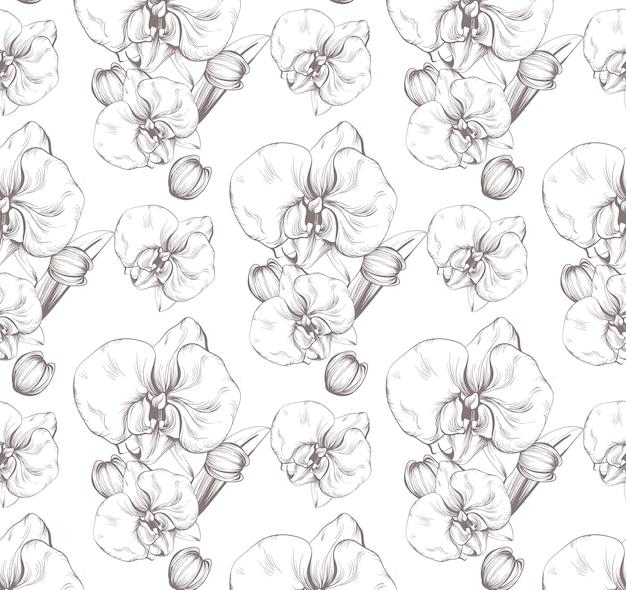 Belles fleurs d'orchidées