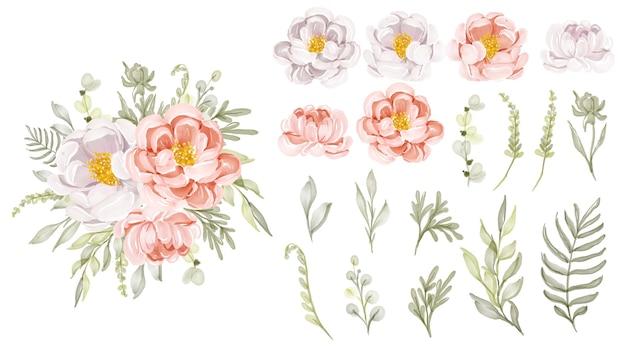 Belles fleurs de pivoines pêche et blanc