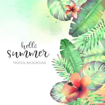 Belles fleurs tropicales sauvages