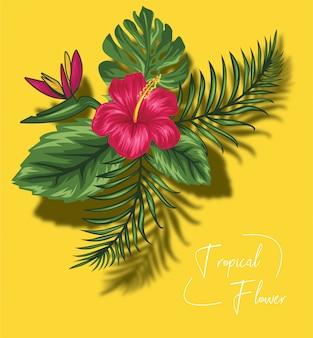 Belles fleurs tropicales