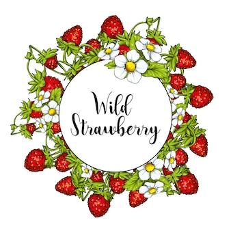 Belles fraises mûres sur les tiges avec des feuilles