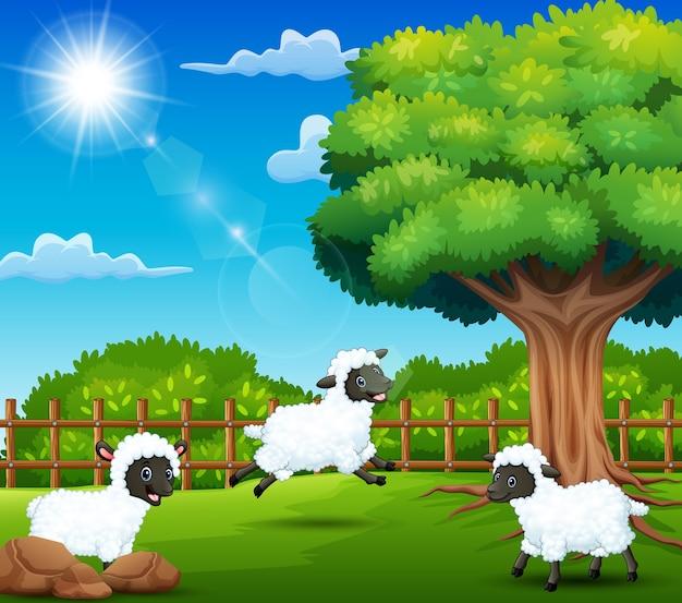 Les bergeries profitent de la nature près de la cage
