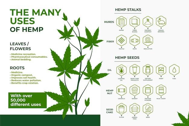 Bienfaits Sains De La Consommation De Cannabis Vecteur gratuit