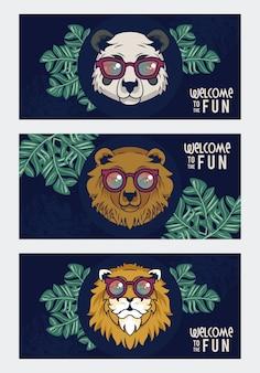 Bienvenue au plaisir avec des animaux à l'aide de lunettes