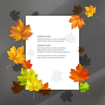 Blanc blanc décoré de feuilles d'érable d'automne colorées.