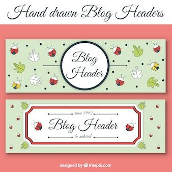 Blog en-tête avec des feuilles et des coccinelles