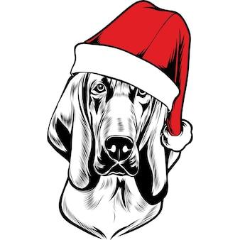 Blood hound dog en bonnet de noel pour noël