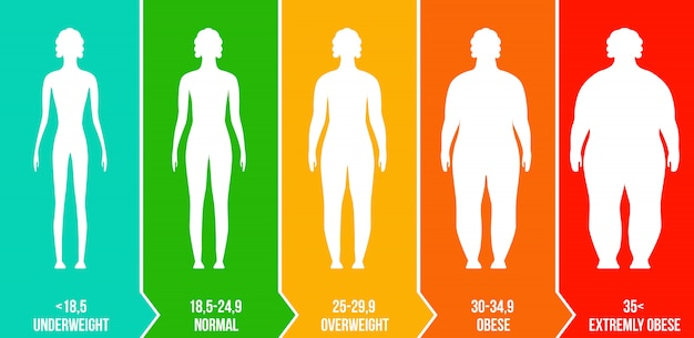Bmi, échelle infographique de l'indice de masse corporelle.