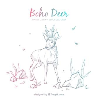 Boho fond avec des cerfs