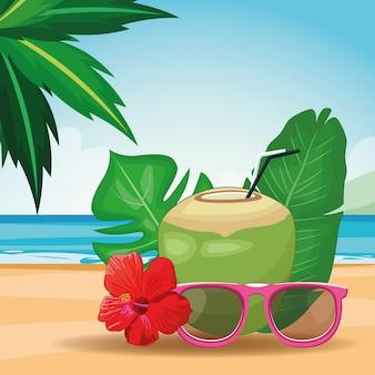 Boissons à la noix de coco et lunettes de soleil