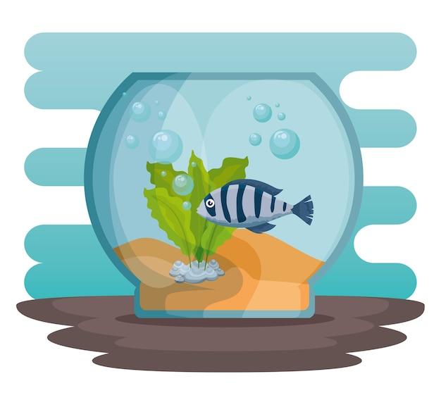 Bol aquarium avec du poisson